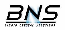 美国BNS公司