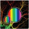 光学相干断层扫描(OCT)用体全息光栅